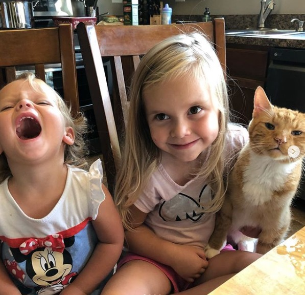 дети, кошка, стол