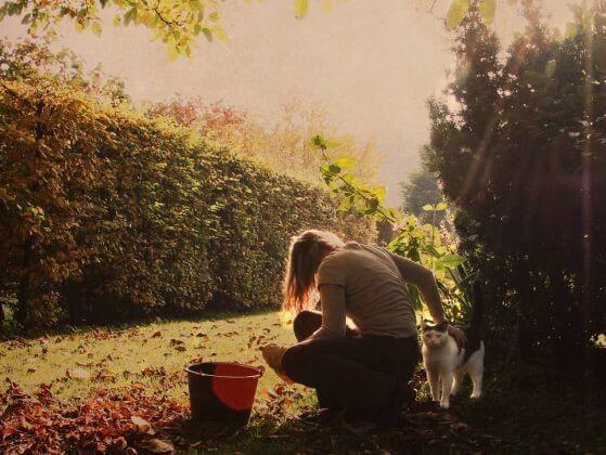 девушка, кошка, ведро, сад, листья, осень