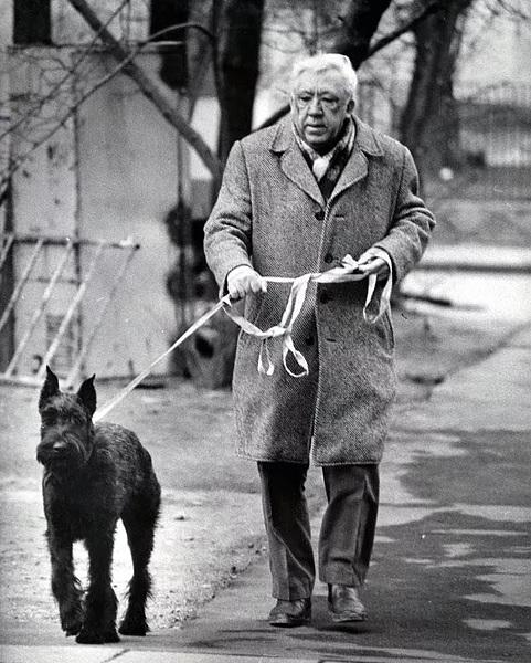 Собака Никулина, ризеншнауцер