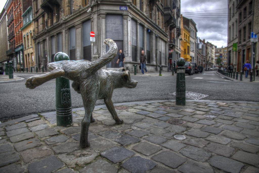 Собака метит столб памятник фото