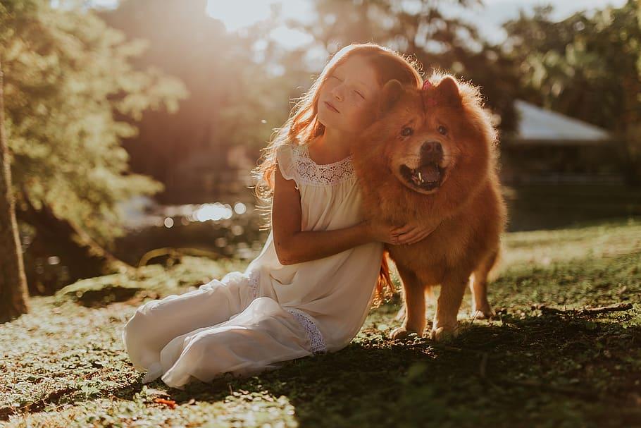 Девочка обнимает собаку чау чау фото