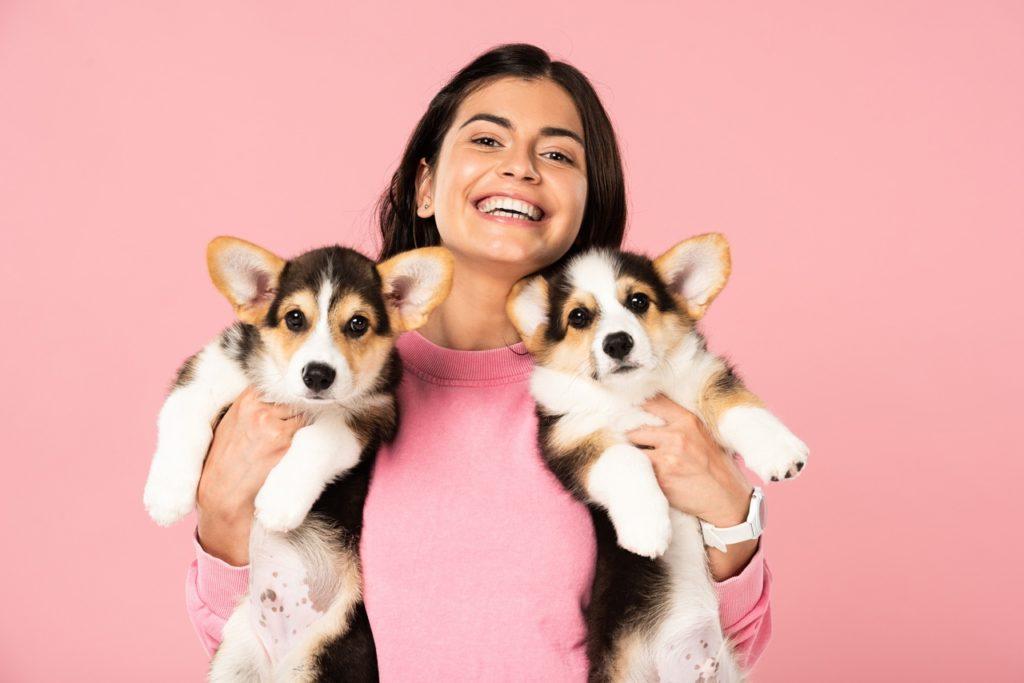 Девушка держит на руках двух щенков корги фото