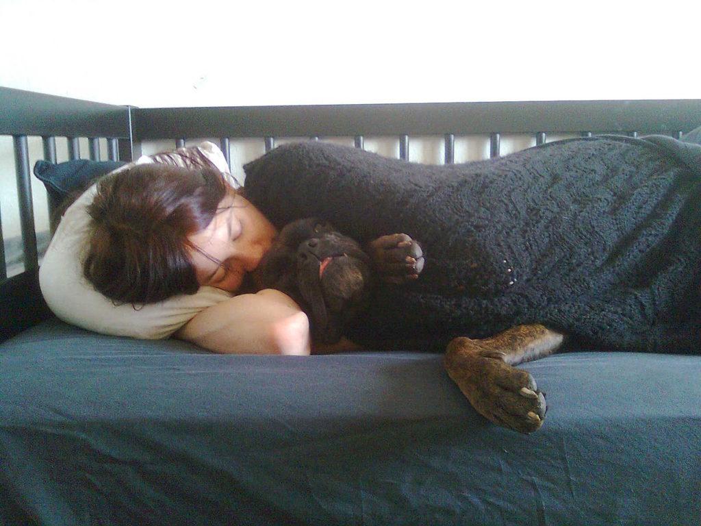 Собака спит в кровати с человеком фото