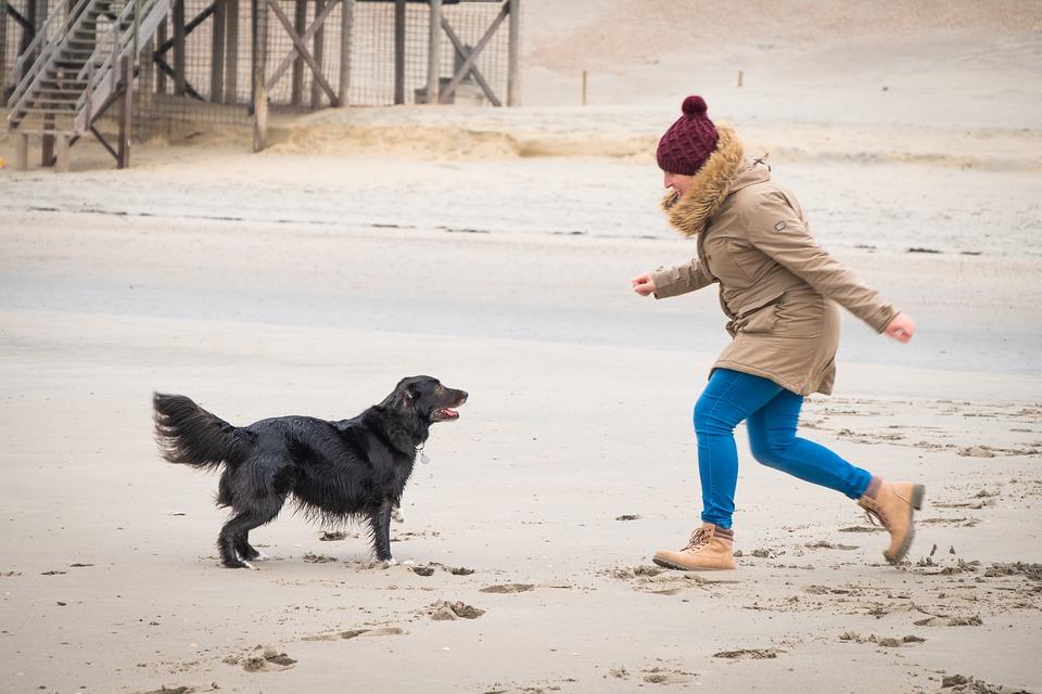 Женщина и собака играют зимой на пляже фото