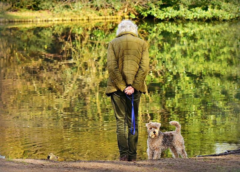 Пожилой человек и собака терьер фото