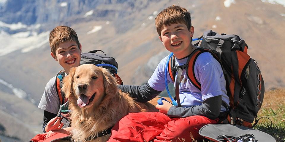 Золотистый ретривер и дети в походе фото