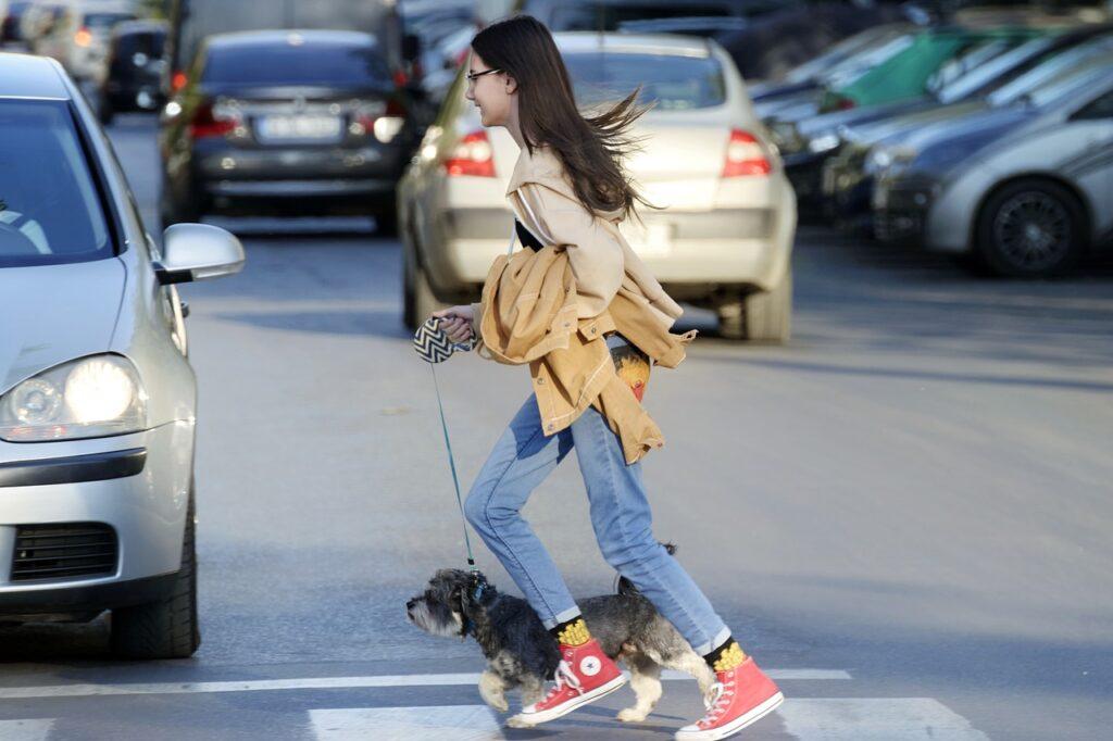 Девочка переходит дорогу с собакой фото