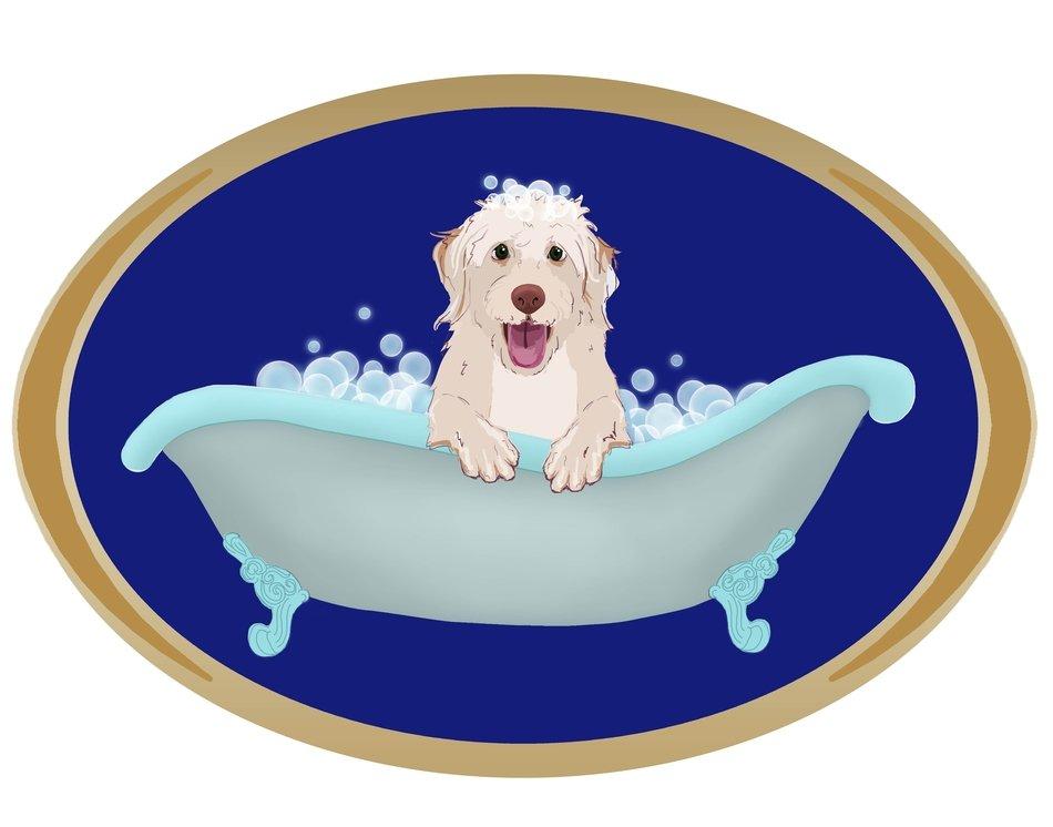 Собака купается в ванне рисунок фото