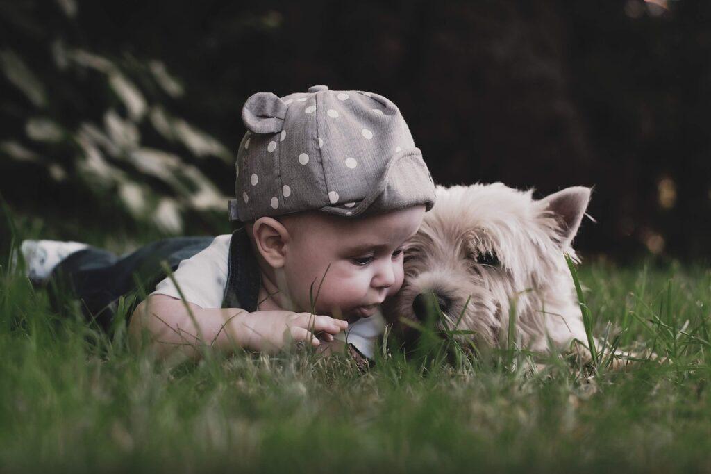 Маленький ребенок и собака лежат на траве фото