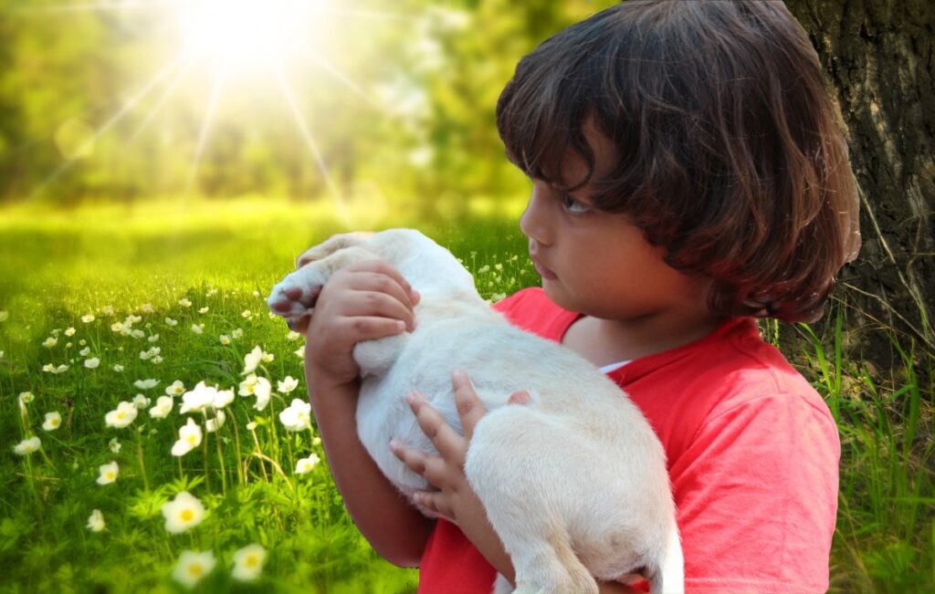 Ребенок держит на руках щенка фото