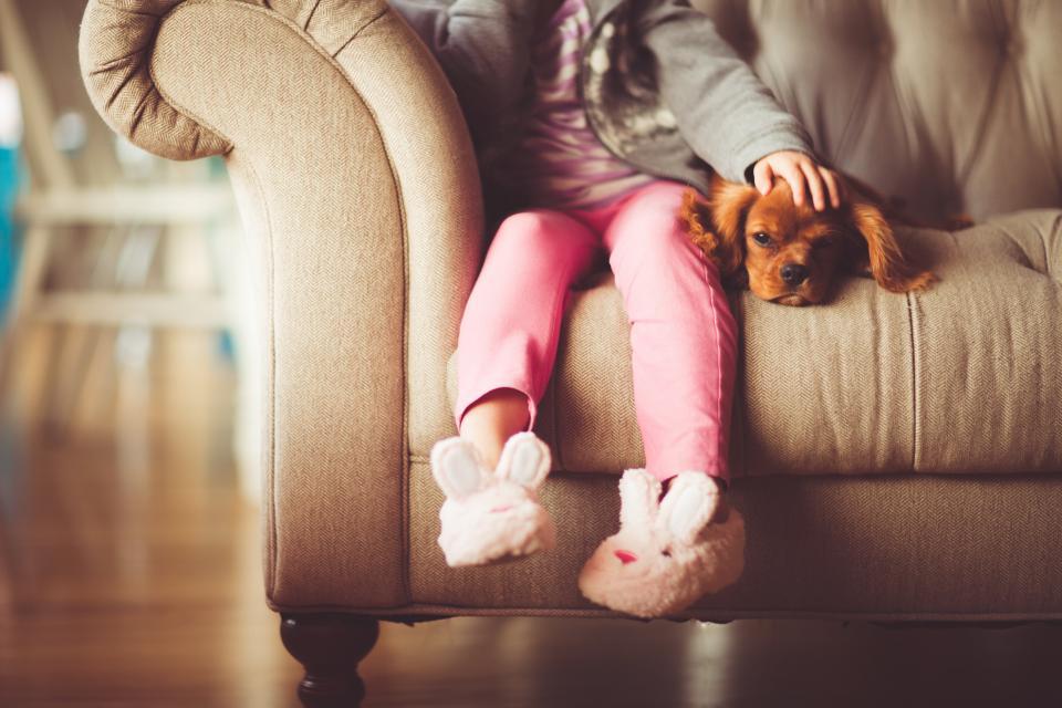 Девочка сидит на кресле с собакой фото