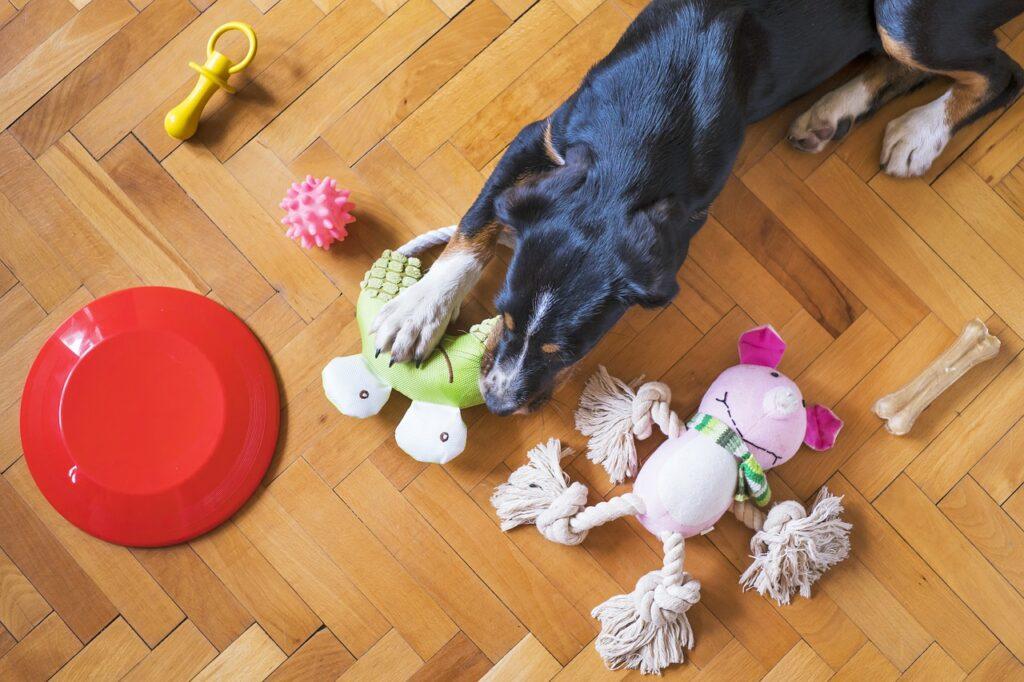 Собака играет с игрушками фото