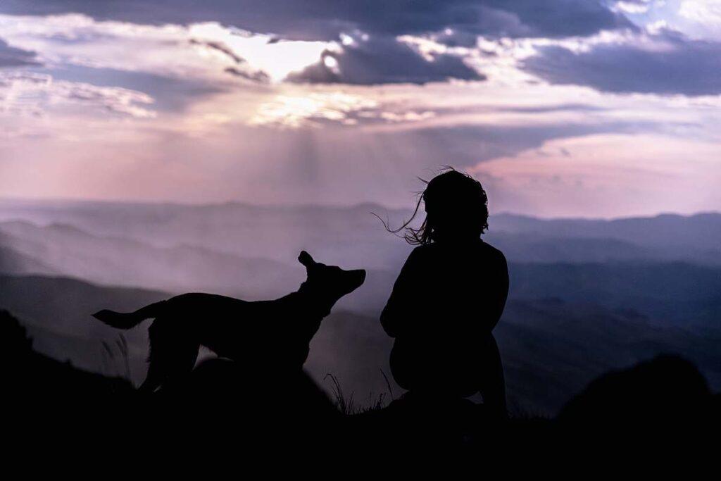 Человек и собака силуэты в горах фото